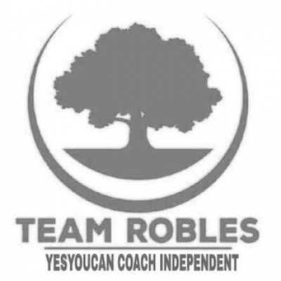 8 team robles